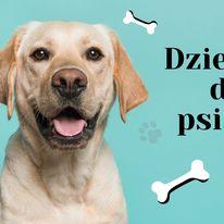 Dzielnice dla psiarzy