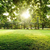 Zielone i przyjazne osiedla deweloperskie