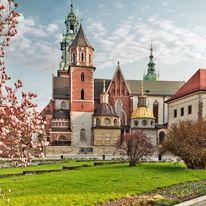 Najbardziej zielone miasta w Polsce - ranking