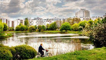 Apartamenty Saska nad Jeziorem