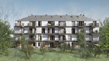 Apartamenty Leśna Polana