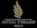 Logo dewelopera: Angel Poland Group
