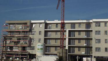 Zator - Apartamenty