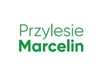 Przylesie Marcelin IIB logo